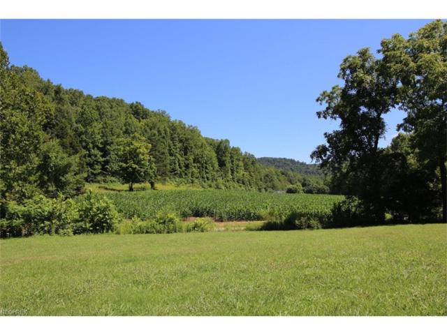 242 Tracy Run Rd, Stout, OH 45684 (MLS #3951026) :: Tammy Grogan and Associates at Cutler Real Estate