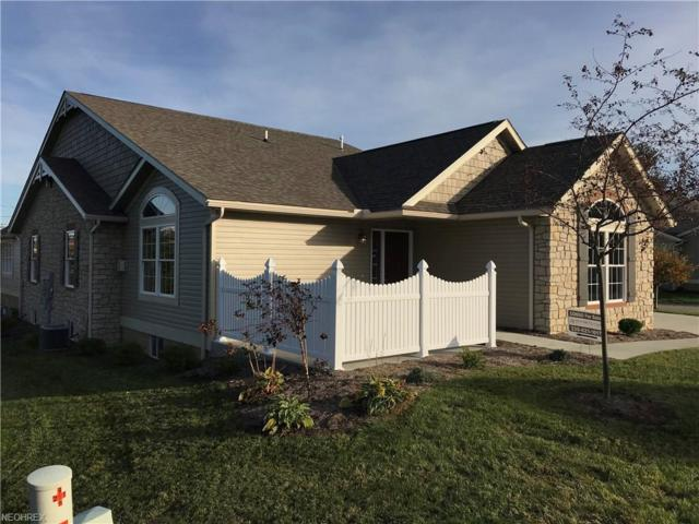 251 Heritage Pointe, Dalton, OH 44618 (MLS #3951264) :: RE/MAX Trends Realty