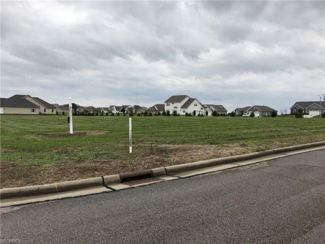 Spring Brook Lot #9216, Wooster, OH 44691 (MLS #3951284) :: Keller Williams Chervenic Realty