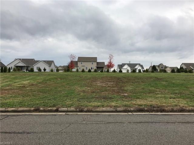 Spring Brook Way Lot #9224, Wooster, OH 44691 (MLS #3951288) :: Keller Williams Chervenic Realty