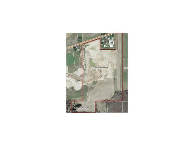 V/L Webb Rd, Ravenna, OH 44266 (MLS #3951371) :: Tammy Grogan and Associates at Cutler Real Estate