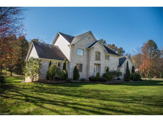 12965 Greystone Dr, Hiram, OH 44234 (MLS #3951783) :: Tammy Grogan and Associates at Cutler Real Estate