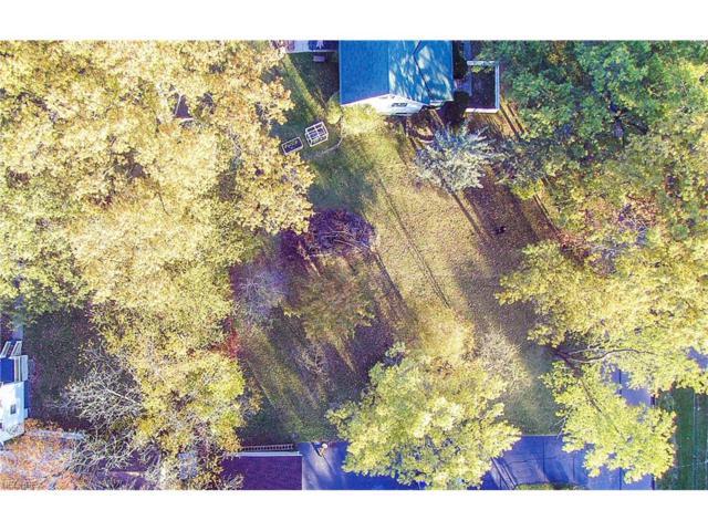 Magnolia Ave, Northfield Village, OH 44067 (MLS #3952026) :: Tammy Grogan and Associates at Cutler Real Estate