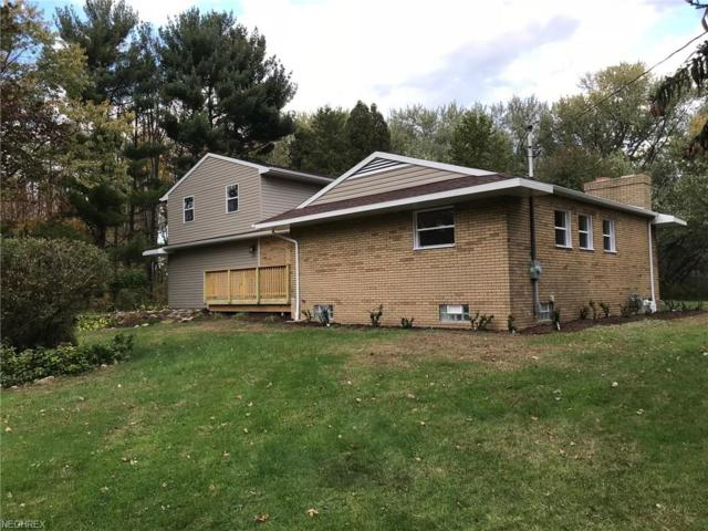 6812 N Main St, Conneaut, OH 44030 (MLS #3952611) :: Tammy Grogan and Associates at Cutler Real Estate