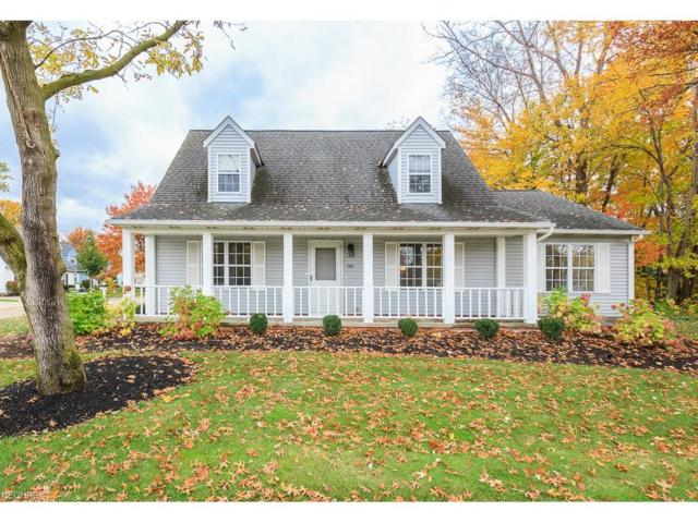 169 Nantucket Cir, Painesville, OH 44077 (MLS #3953122) :: The Crockett Team, Howard Hanna