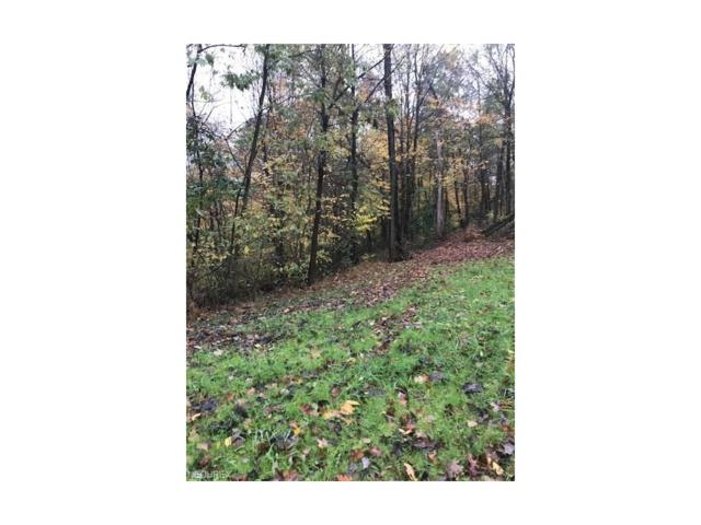 455 Smith Hill Road, St Marys, WV 26170 (MLS #3953498) :: Tammy Grogan and Associates at Cutler Real Estate