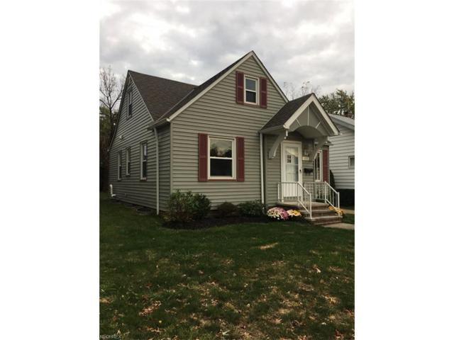 135 E 220th St, Euclid, OH 44123 (MLS #3953653) :: Tammy Grogan and Associates at Cutler Real Estate
