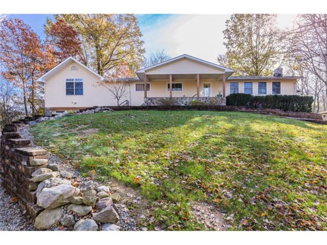 9836 Hoose Rd, Concord, OH 44060 (MLS #3953681) :: The Crockett Team, Howard Hanna