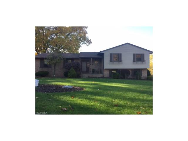 4517 Woodland Ave NW, Canton, OH 44709 (MLS #3955144) :: The Kaszyca Team