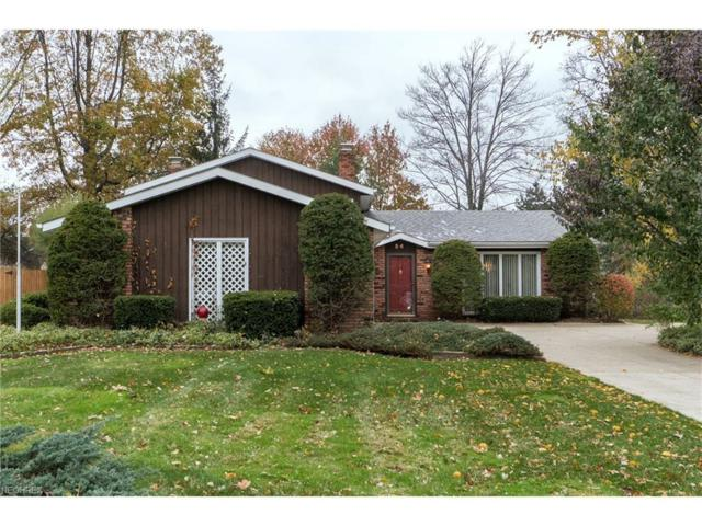 54 Monticello Dr, Brunswick, OH 44212 (MLS #3955380) :: Tammy Grogan and Associates at Cutler Real Estate