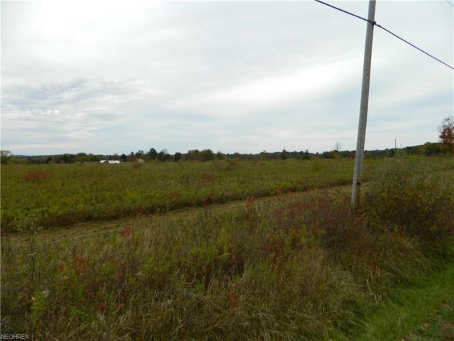 State Route 305 Vacant Land, Garrettsville, OH 44231 (MLS #3955540) :: The Crockett Team, Howard Hanna
