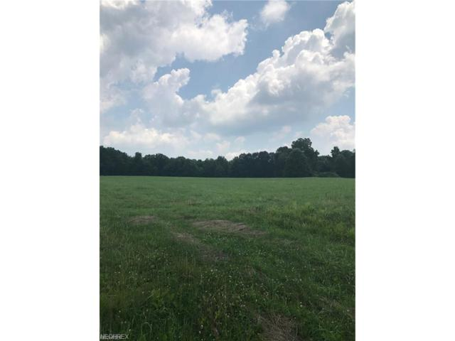 Howell Rd, East Palestine, OH 44413 (MLS #3955854) :: Tammy Grogan and Associates at Cutler Real Estate