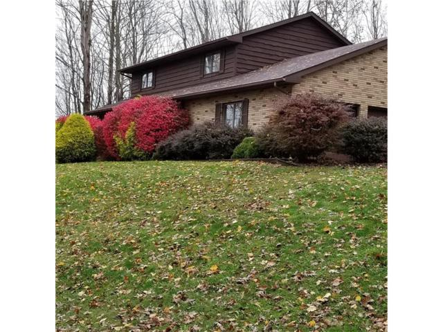 44 W Harmony Heights Way, St Marys, WV 26170 (MLS #3955976) :: Tammy Grogan and Associates at Cutler Real Estate