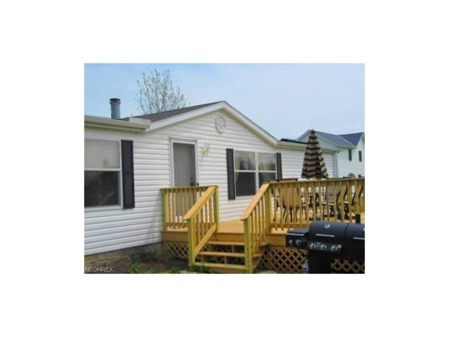 128 Fernwood, Kelleys Island, OH 43438 (MLS #3956000) :: Tammy Grogan and Associates at Cutler Real Estate