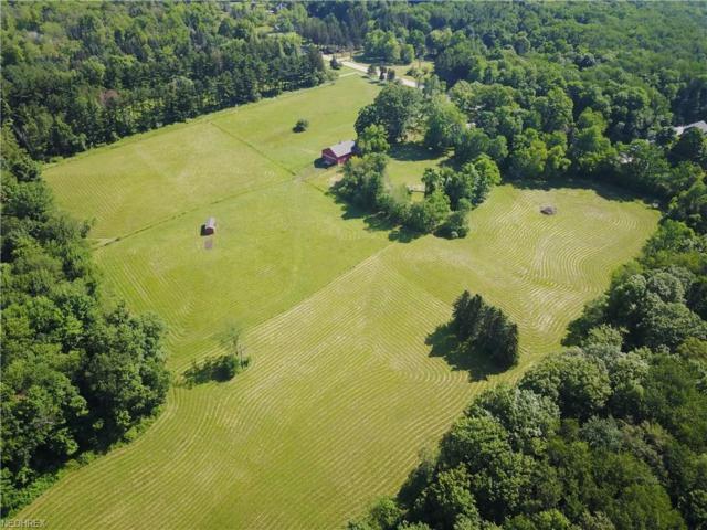 V/L Auburn Rd, Munson, OH 44024 (MLS #3956025) :: Tammy Grogan and Associates at Cutler Real Estate