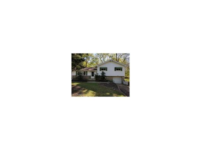24319 Tryon Road, Oakwood Village, OH 44146 (MLS #3956360) :: The Crockett Team, Howard Hanna