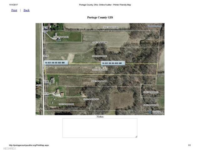 Stamm, Mantua, OH 44255 (MLS #3956689) :: Tammy Grogan and Associates at Cutler Real Estate