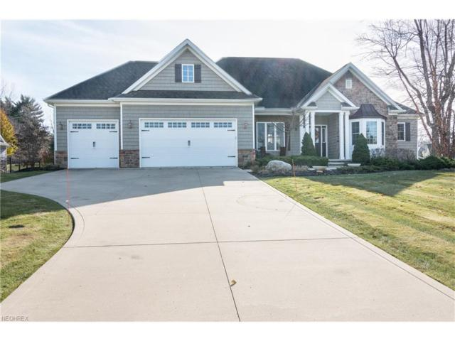 11540 Malachite Ct, Painesville, OH 44077 (MLS #3957539) :: The Crockett Team, Howard Hanna