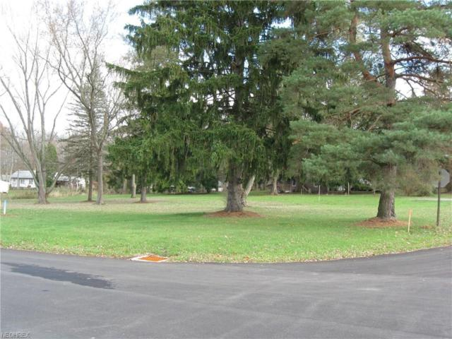 810 Main St, Columbiana, OH 44408 (MLS #3957770) :: RE/MAX Valley Real Estate
