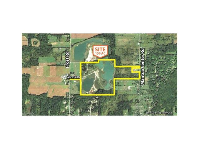 12018 Frost Rd, Mantua, OH 44255 (MLS #3957779) :: Tammy Grogan and Associates at Cutler Real Estate