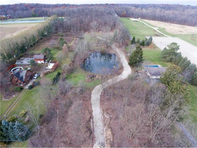 1134 Ridge Rd, Hinckley, OH 44233 (MLS #3957835) :: Tammy Grogan and Associates at Cutler Real Estate
