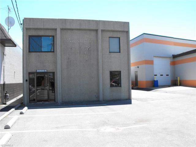 30500 Euclid Ave, Wickliffe, OH 44092 (MLS #3958120) :: The Crockett Team, Howard Hanna