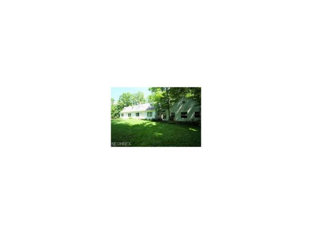 16460 Farley Rd, Middlefield, OH 44062 (MLS #3958261) :: Tammy Grogan and Associates at Cutler Real Estate
