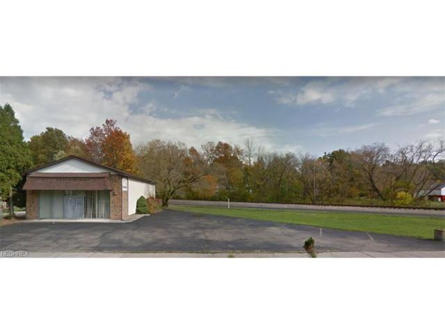 554 N Chestnut St, Ravenna, OH 44266 (MLS #3958344) :: Tammy Grogan and Associates at Cutler Real Estate