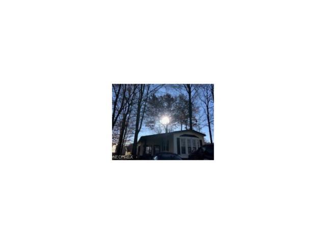 1229 Columbiana Lisbon Rd, Columbiana, OH 44408 (MLS #3958794) :: RE/MAX Valley Real Estate
