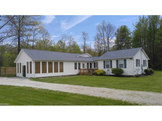 6940 Lake Rd W, Saybrook, OH 44004 (MLS #3958859) :: Tammy Grogan and Associates at Cutler Real Estate