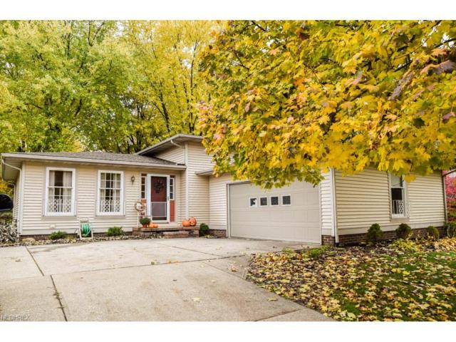 5592 Choctaw St NW, North Canton, OH 44720 (MLS #3959091) :: RE/MAX Edge Realty