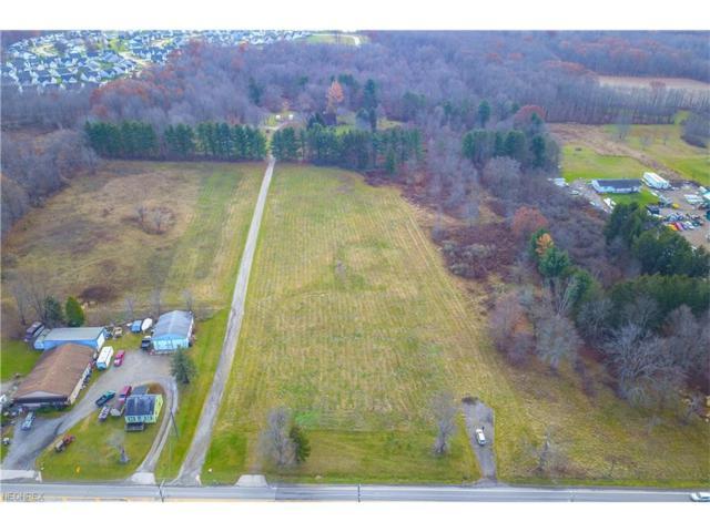 15339 Kinsman Rd, Middlefield, OH 44062 (MLS #3959460) :: Tammy Grogan and Associates at Cutler Real Estate