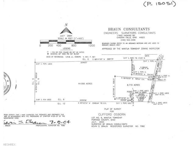 Sheldon Rd, Mantua, OH 44255 (MLS #3959580) :: Tammy Grogan and Associates at Cutler Real Estate