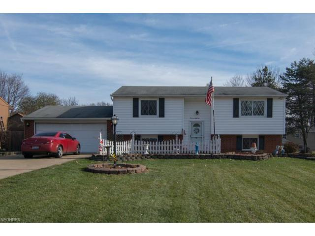1951 Birch Trace Dr, Austintown, OH 44515 (MLS #3959712) :: RE/MAX Valley Real Estate
