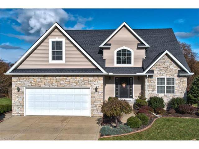 4433 Loreto Landing Dr, Perry, OH 44081 (MLS #3960339) :: The Kaszyca Team