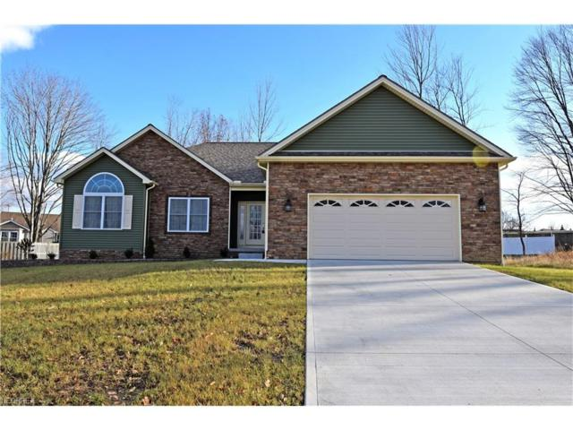 738 Ava Ct, Hubbard, OH 44425 (MLS #3960488) :: RE/MAX Valley Real Estate