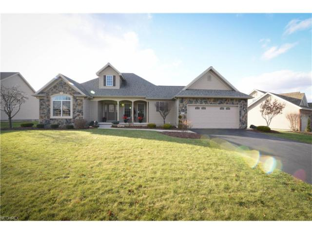 4196 Nicolina Way, Canfield, OH 44406 (MLS #3960596) :: RE/MAX Valley Real Estate