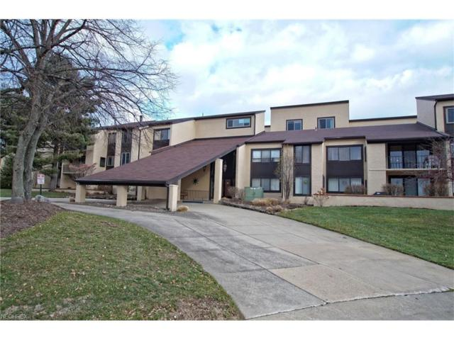 186 Court Dr #203, Fairlawn, OH 44333 (MLS #3960818) :: RE/MAX Edge Realty