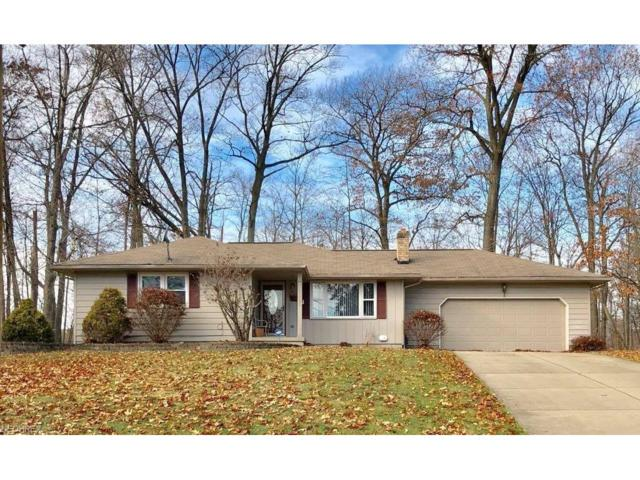 6352 Tara Ct, Poland, OH 44514 (MLS #3961083) :: RE/MAX Valley Real Estate