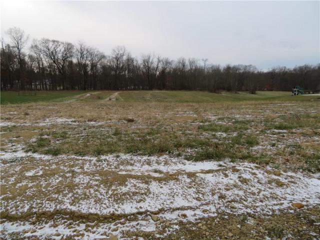 Hunt Club Dr, Wooster, OH 44691 (MLS #3961188) :: RE/MAX Edge Realty