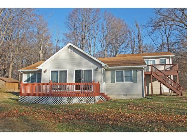 111 Beach, Kelleys Island, OH 43438 (MLS #3961251) :: Tammy Grogan and Associates at Cutler Real Estate