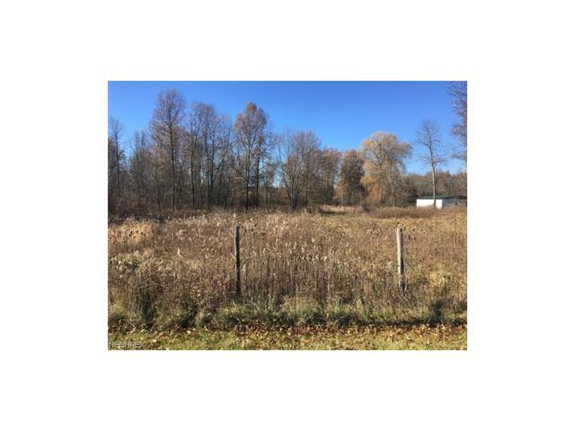 Stratton Rd, Salem, OH 44460 (MLS #3961383) :: The Crockett Team, Howard Hanna