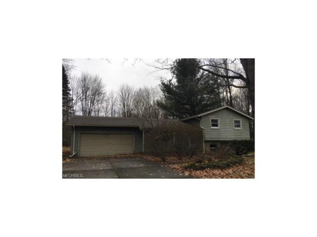 8421 Whipporwill Rd, Ravenna, OH 44266 (MLS #3961512) :: Tammy Grogan and Associates at Cutler Real Estate