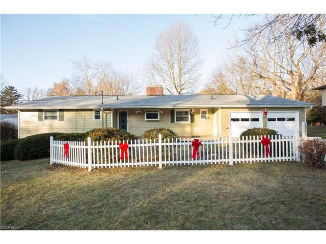 1560 S Lincoln St, Kent, OH 44240 (MLS #3961602) :: RE/MAX Edge Realty