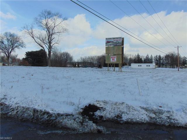 8380 East Lincoln Way, Apple Creek, OH 44606 (MLS #3961925) :: Keller Williams Chervenic Realty
