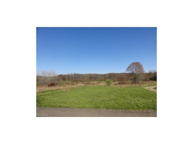 State Route 44, Mantua, OH 44255 (MLS #3961979) :: Tammy Grogan and Associates at Cutler Real Estate