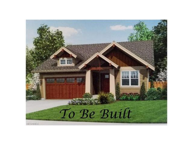 21 Holli Ct, West Salem, OH 44287 (MLS #3962097) :: Tammy Grogan and Associates at Cutler Real Estate