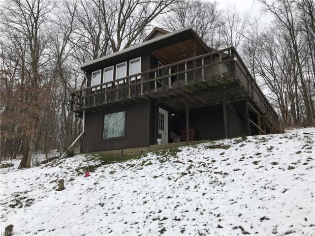 3110 Roswell Rd SW, Carrollton, OH 44615 (MLS #3962255) :: Tammy Grogan and Associates at Cutler Real Estate