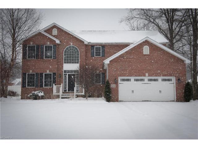 5242 Watersedge Ct, Ashtabula, OH 44004 (MLS #3963117) :: Tammy Grogan and Associates at Cutler Real Estate
