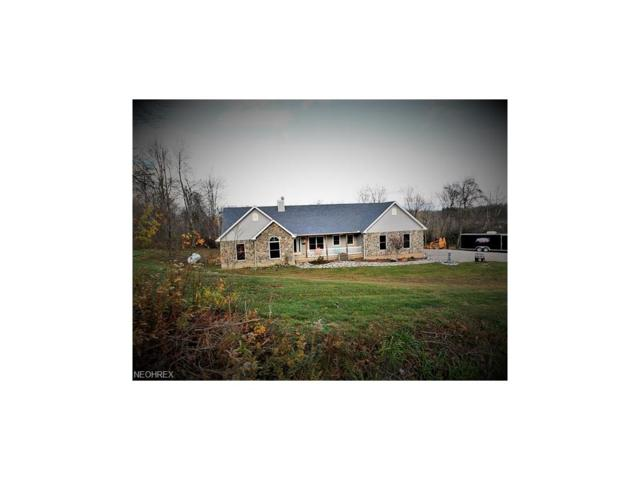 10894 Pleasant Valley Rd, Frazeysburg, OH 43822 (MLS #3963345) :: The Crockett Team, Howard Hanna